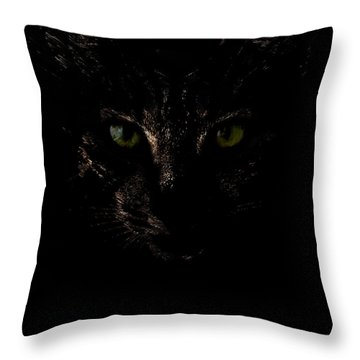 Throw Pillow featuring the photograph Dark Knight by Helga Novelli