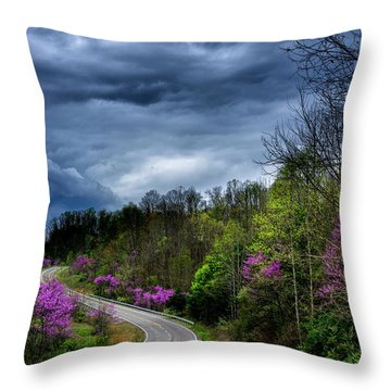 Throw Pillow featuring the photograph Dark Clouds Over Redbud Highway by Thomas R Fletcher