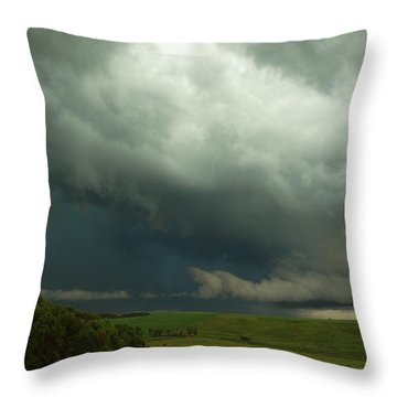 Dark Countryside Throw Pillow by Melissa Peterson