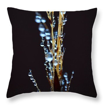 Dark Drops Throw Pillow