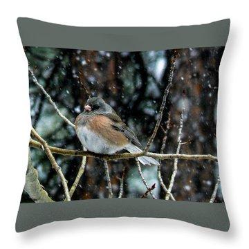 Dark-eyed Junco During A Snowfall Throw Pillow