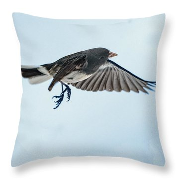 Dark-eyed Junco Flying Throw Pillow