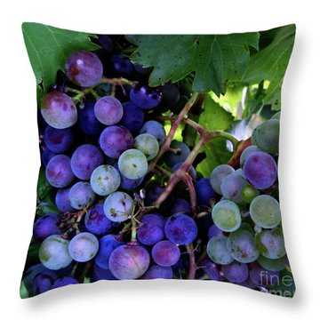 Throw Pillow featuring the photograph Dark Grapes by Carol Sweetwood