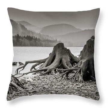 Dark Lake Throw Pillow