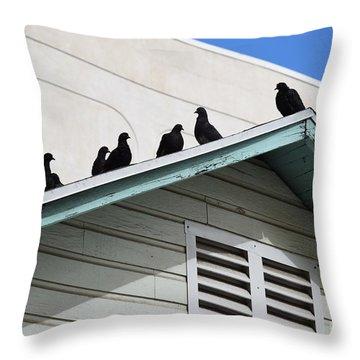 Dark Pigeons Throw Pillow