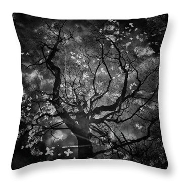 Dark Pool Reflection Of Forest Throw Pillow