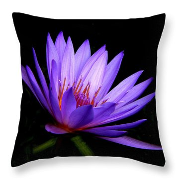 Dark Side Of The Purple Water Lily Throw Pillow