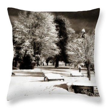 Dark Skies And Winter Park Throw Pillow