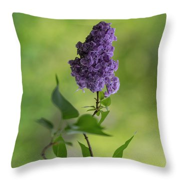 Dark Violet Lilac Throw Pillow