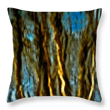 Dark Wood Throw Pillow by Gillis Cone