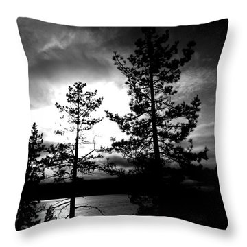 Darkness Crawls Throw Pillow by Leah Moore