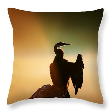 Darter Bird With Misty Sunrise Throw Pillow
