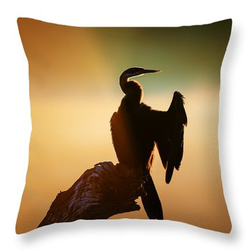 Darter Bird With Misty Sunrise Throw Pillow