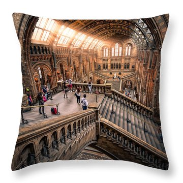 Darwin And Friends Throw Pillow