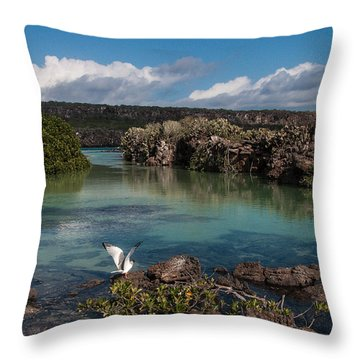 Darwin Bay     Genovesa Island      Galapagos Islands Throw Pillow