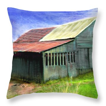 Dave's Barn Throw Pillow