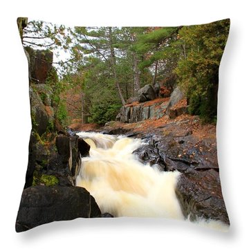 Throw Pillow featuring the photograph Dave's Falls #7277 by Mark J Seefeldt