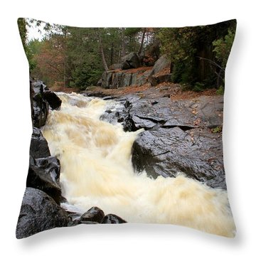 Throw Pillow featuring the photograph Dave's Falls #7284 by Mark J Seefeldt