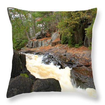 Throw Pillow featuring the photograph Dave's Falls #7311 by Mark J Seefeldt