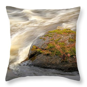 Throw Pillow featuring the photograph Dave's Falls #7442 by Mark J Seefeldt