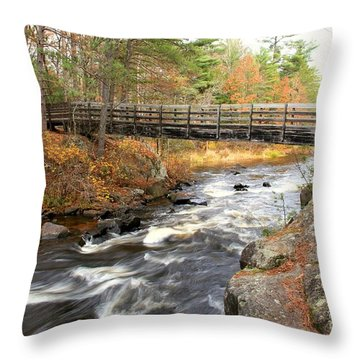 Throw Pillow featuring the photograph Dave's Falls #7480 by Mark J Seefeldt