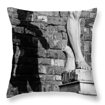David Throw Pillow