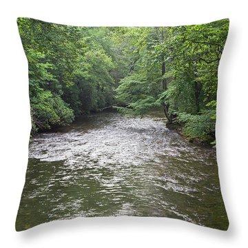 Davidson River In North Carolina Throw Pillow
