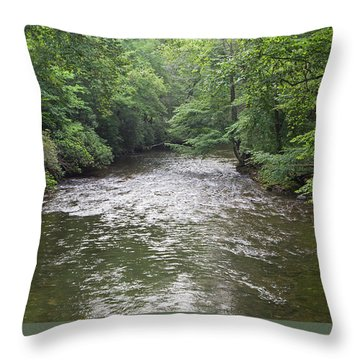Davidson River Throw Pillow
