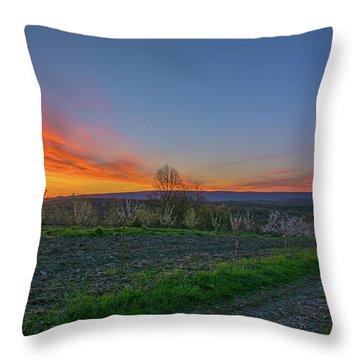 Dawn At Roe Orchards I Throw Pillow by Angelo Marcialis