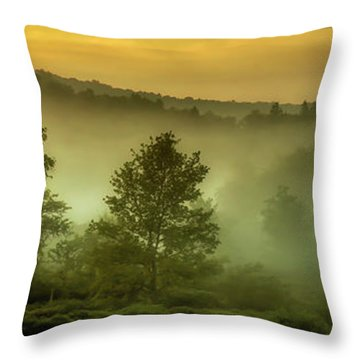 Throw Pillow featuring the photograph Dawn At Wildlife Management Area by Thomas R Fletcher
