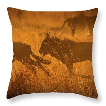 Dawn Chase Throw Pillow
