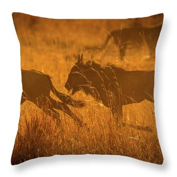 Dawn Chase Throw Pillow