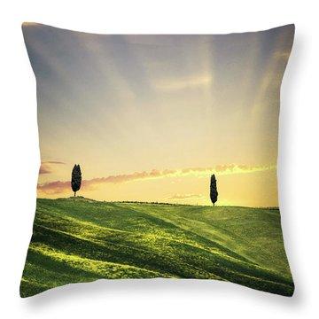 Dawn Chorus Throw Pillow
