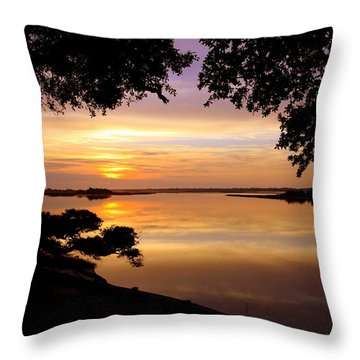 Dawn Throw Pillow by Karen Wiles