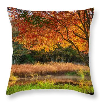 Dawn Lighting Rhode Island Fall Colors Throw Pillow
