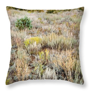 Dawn Near Ruidoso Nm Throw Pillow by Matt Suess