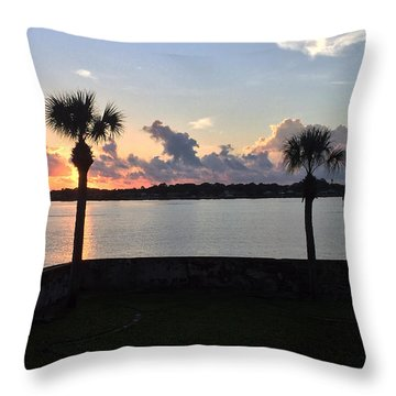 Throw Pillow featuring the photograph Celebrate 450 Landing Day by LeeAnn Kendall