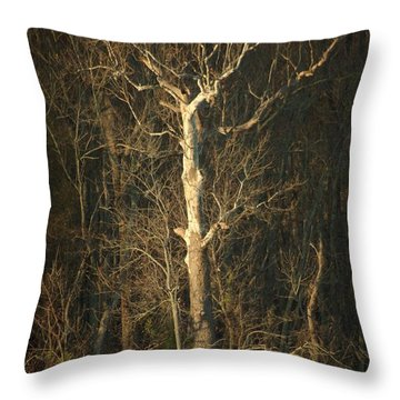 Day Break Tree Throw Pillow