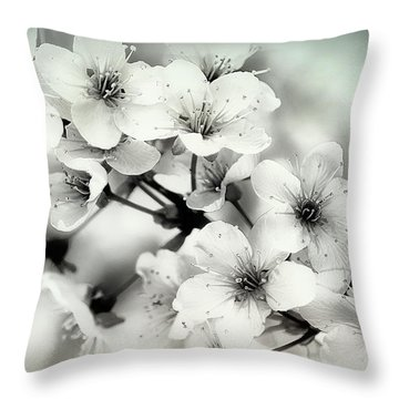 Throw Pillow featuring the photograph Day Dreams by Darlene Kwiatkowski