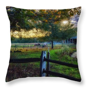 Day Is Nearly Done Throw Pillow by Tricia Marchlik