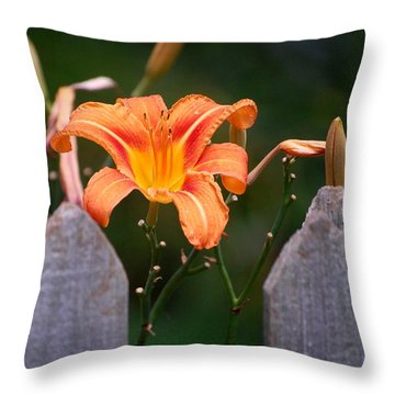 Day Lilly Fenced In Throw Pillow by David Lane