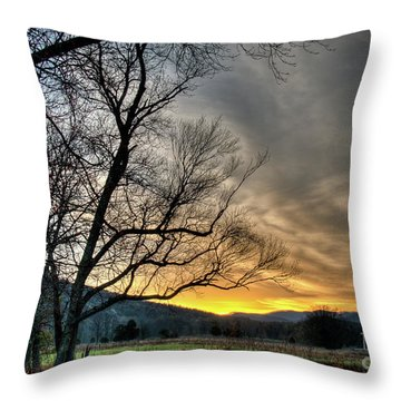 Daybreak In The Cove Throw Pillow by Douglas Stucky