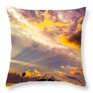 Daybreak Throw Pillow by MaryLee Parker