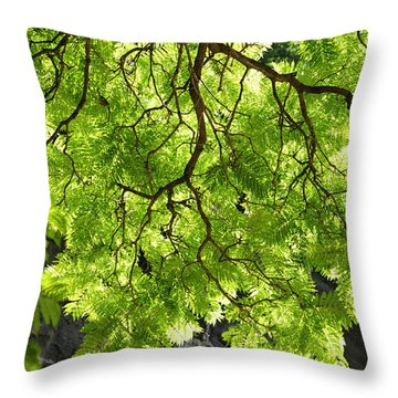 Daydream Throw Pillow by Skip Hunt