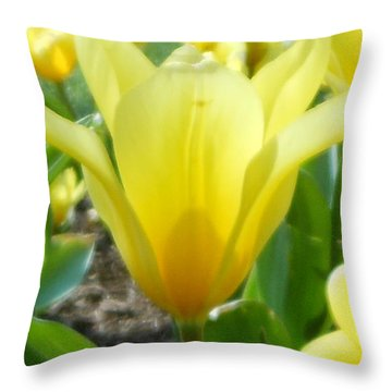 Daydreaming Of Yellow Tulips Throw Pillow