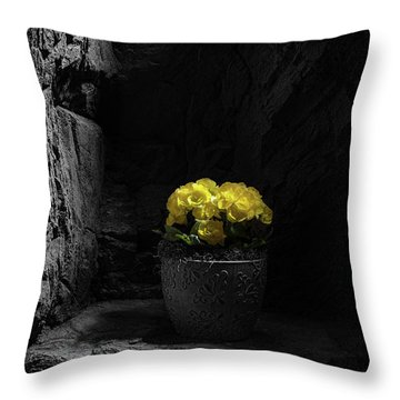 Throw Pillow featuring the photograph Daylight Delight by Tom Mc Nemar