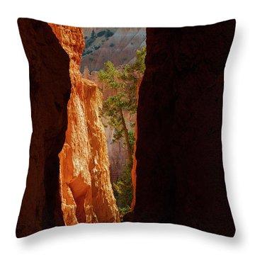 Daylight Throw Pillow