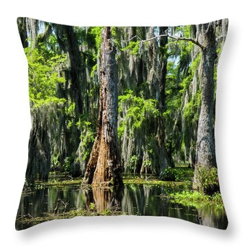 Daylight Swampmares Throw Pillow