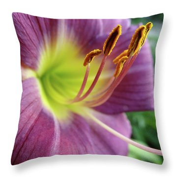 Daylilies In Summer Throw Pillow