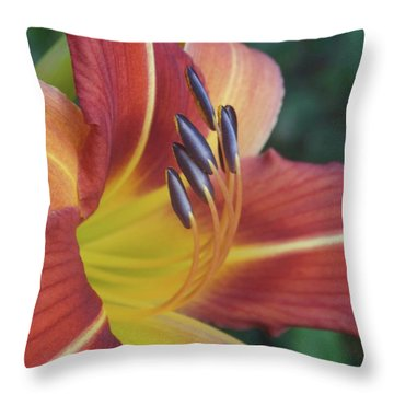 Daylilies Orange Throw Pillow